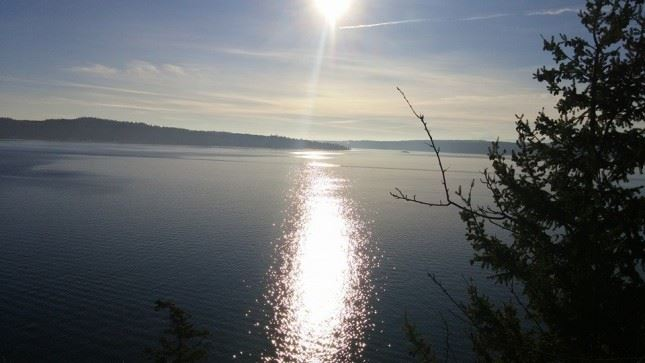 Sunshine on the sound! Visitors enjoyed a sparkling First Day Hike at both Camano Island parks.