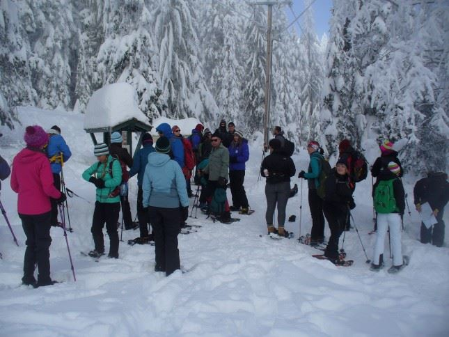 This hike is so delightful! Snowy conditions didn't stop the fun at Mount Spokane!