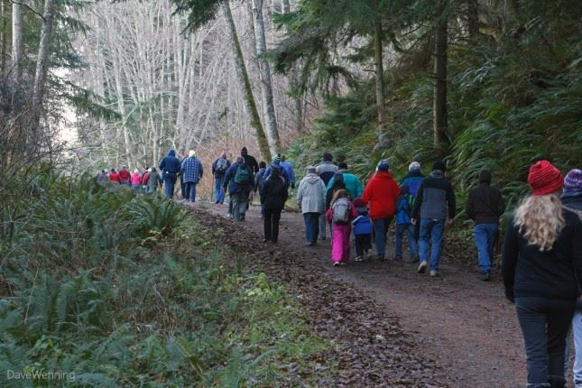 Over the bridge and through the woods, Deception Pass drew a crowd of enthusiastic hikers on Jan. 1.