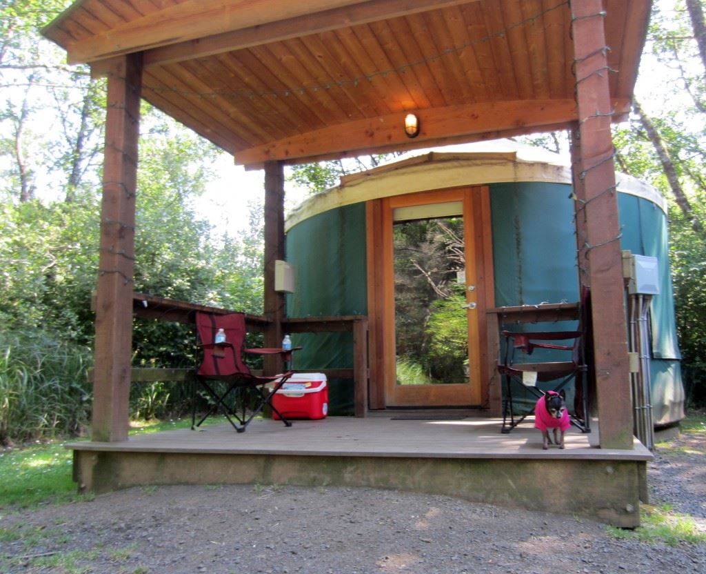 Yurt 25 at Grayland Beach State Park  is just one of three pet-friendly yurts offered at the park.