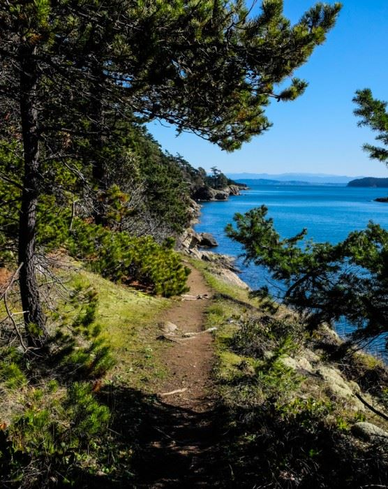 Ewing Cove trail