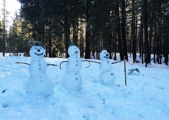 Snowmen-for-web