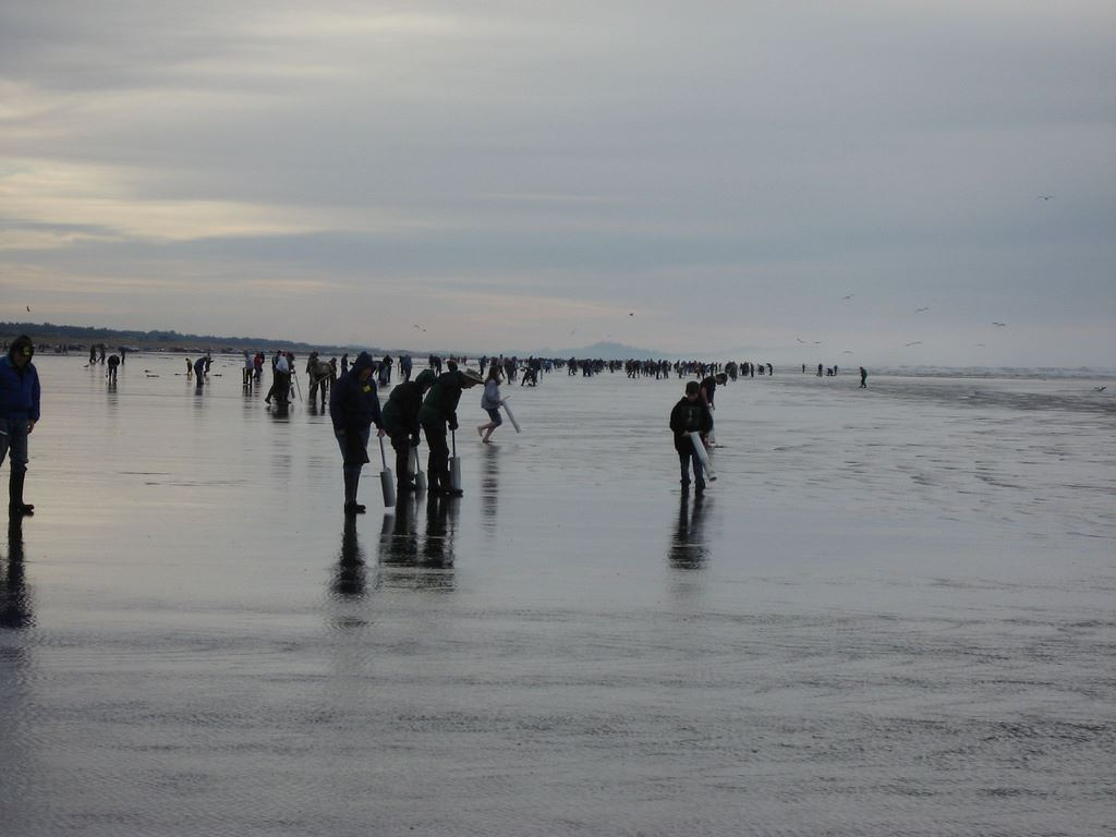 Crowded Razor Clamming CCFKR Mike Murry
