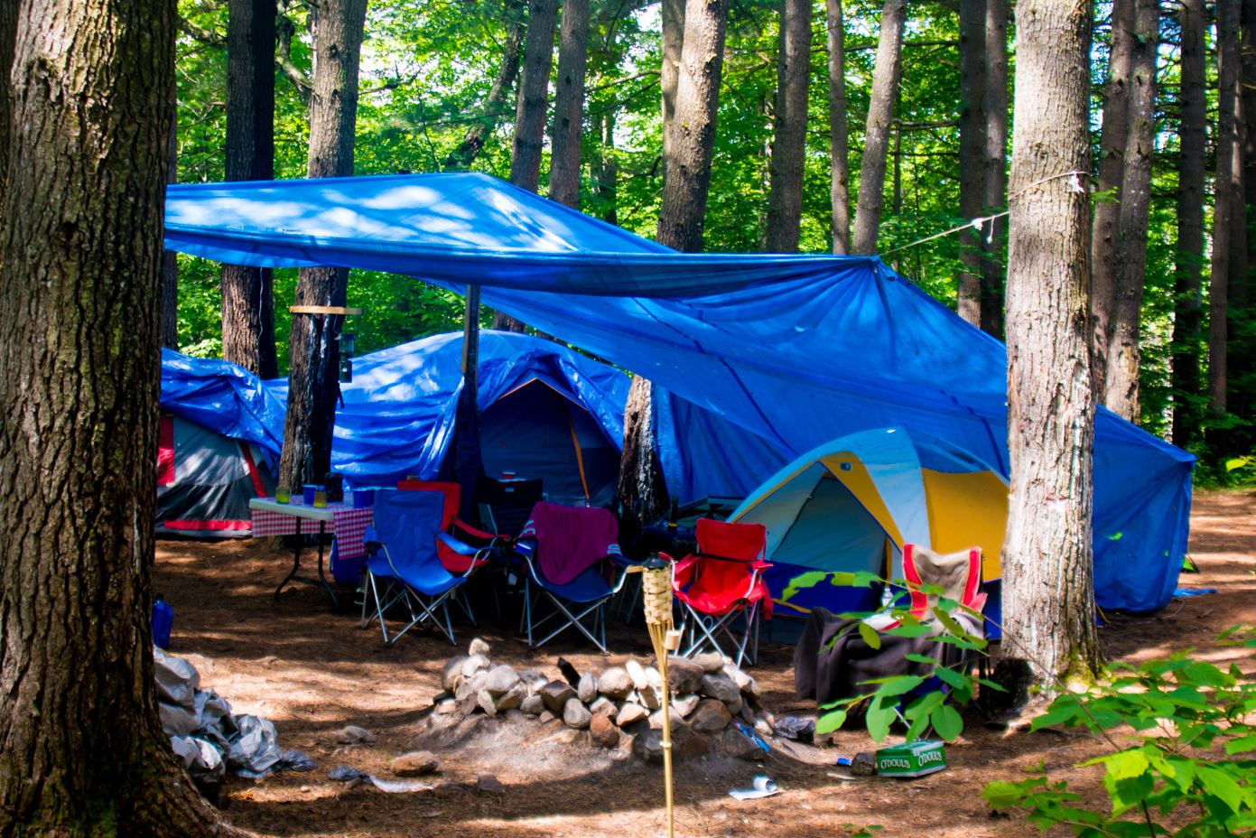 Camping_Tents_in_the_Woods by Jess Mann. jpg